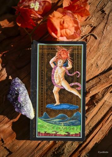seminaire tarot - carte